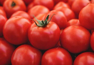 Jakie właściwości ma pomidor?
